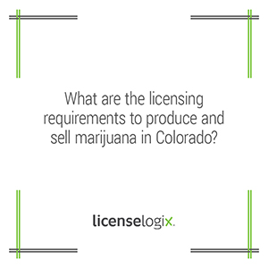 What are the licensing requirements to produce and sell marijuana in Colorado